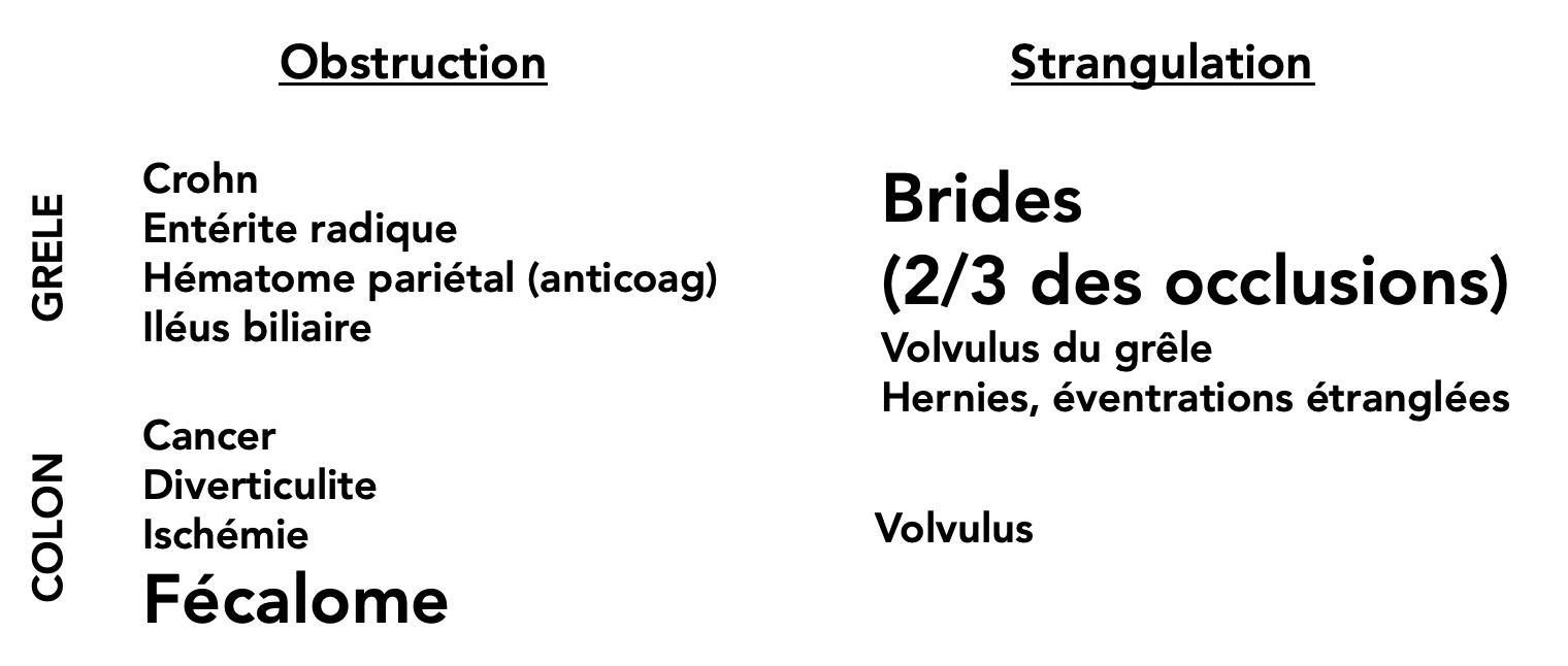 Principales étiologies des occlusions intestinales